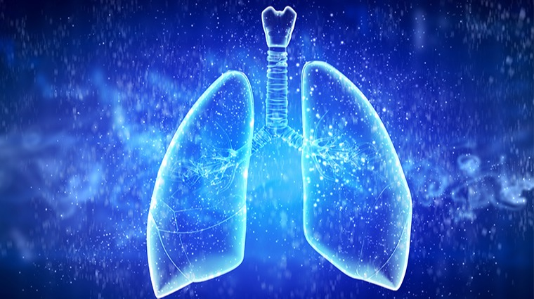 腺腫 肝 細胞